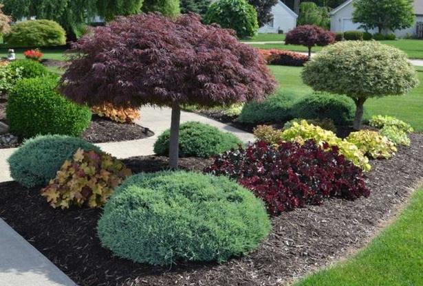 Sträucher Für Kleine Gärten