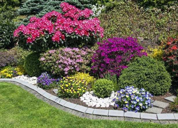 Beet anlegen pflegeleicht for Blumenbeete anlegen beispiele