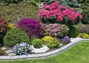 Blumenbeet bepflanzen bilder for Garten beet neu bepflanzen