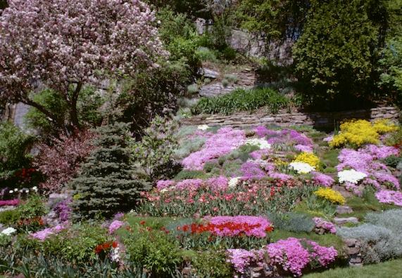 Garten Mit Hanglage Gestalten