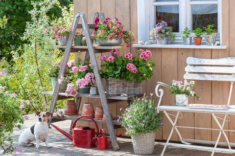 Terrasse Romantisch Gestalten