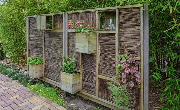 Garten natürlicher sichtschutz