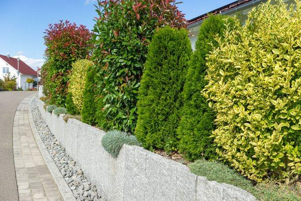 Elegant Gartenzaun Obi Galerie Von Wohndesign Ideen