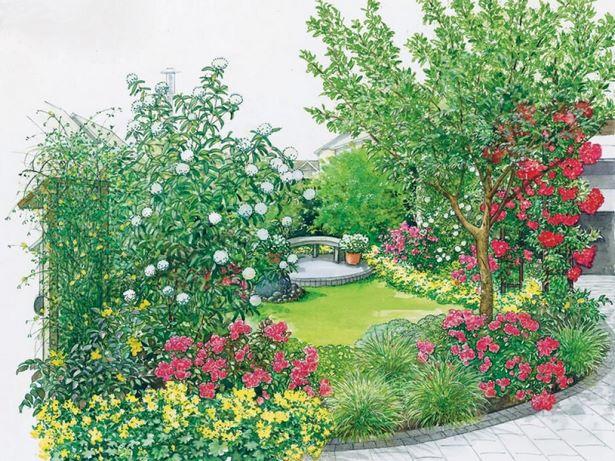 Vorgarten immergr ne pflanzen - Immergrune gartenpflanzen ...